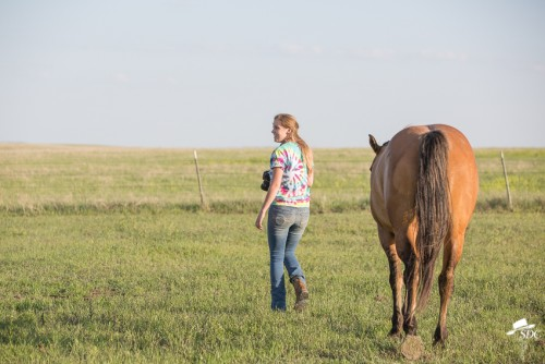 ranch internship, ranching internship, equine internship, college equine internship