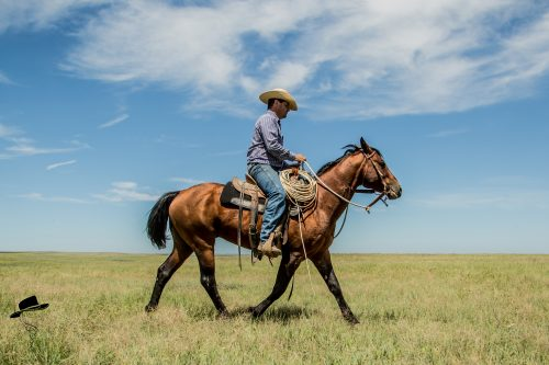 Zach Ducheneaux, The DX Ranch Crew, South Dakota Cowgirl Photography, south dakota cowboys