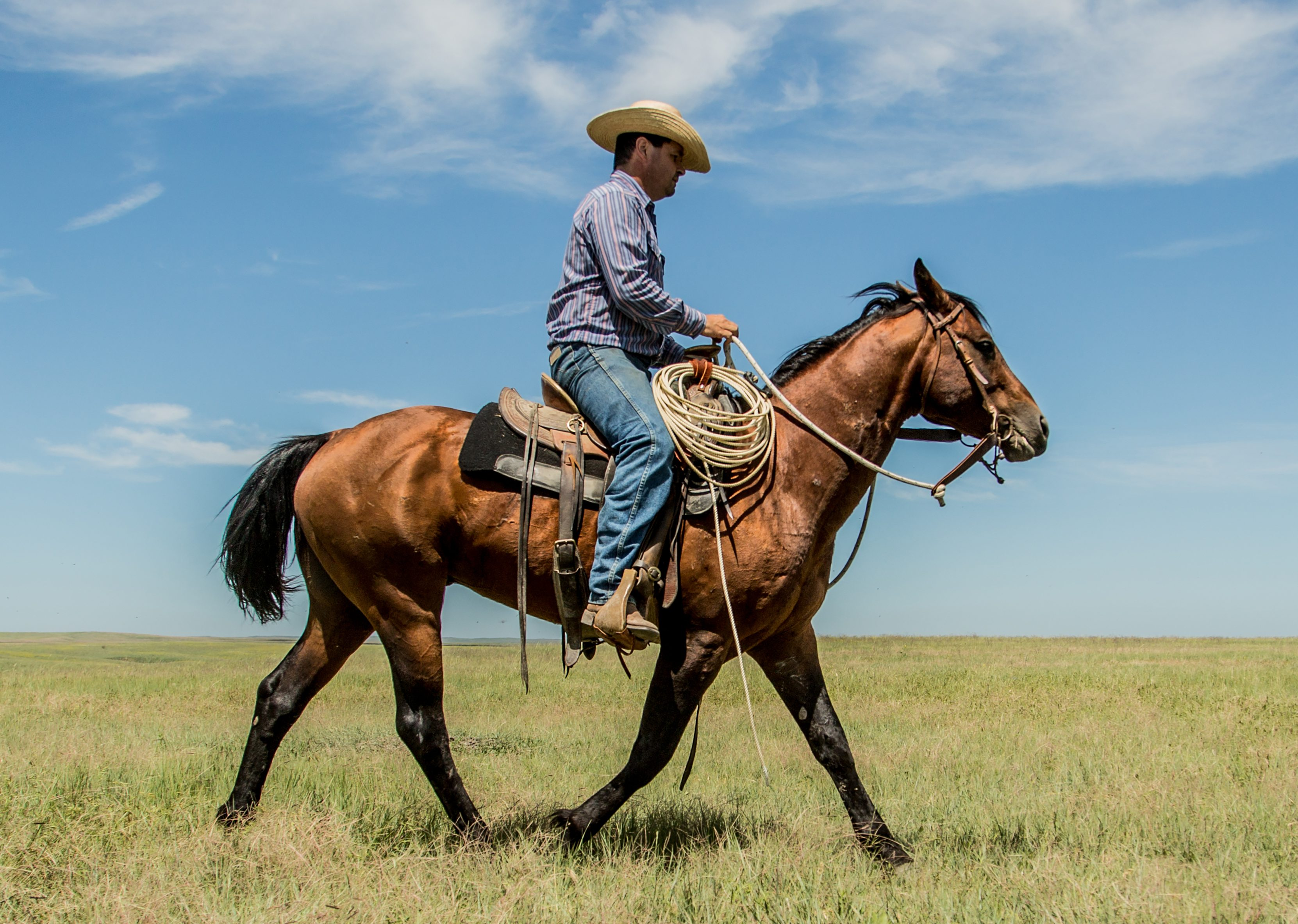 Zach Ducheneaux, The DX Ranch Crew, South Dakota Cowgirl Photography, south dakota cowboys
