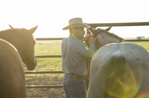 shot for western horseman by kate beyers, zach ducheneaux
