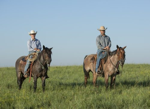 ty ducheneaux, the dx ranch, the ranch crew, shot for western horseman by kate byars