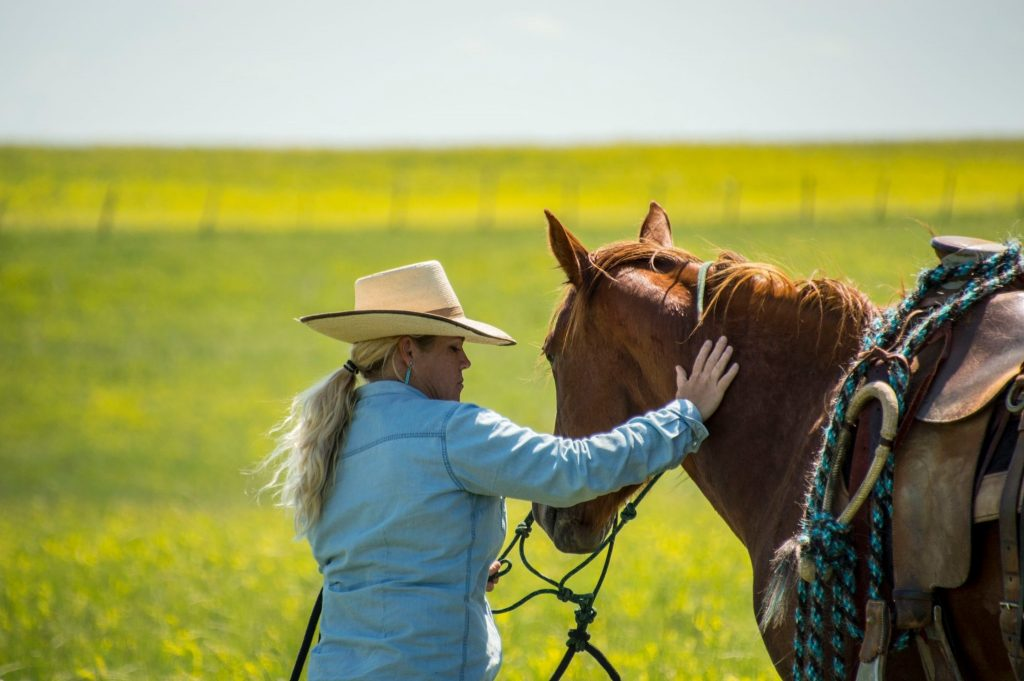 horsemanship, the dx ranch, ranching, the south dakota cowgirl, mackenzie scheff photography