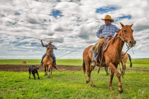 burt dillabaugh, chris dickinson photography, ranching, south dakota ranching, the dx ranch, the dx ranch crew