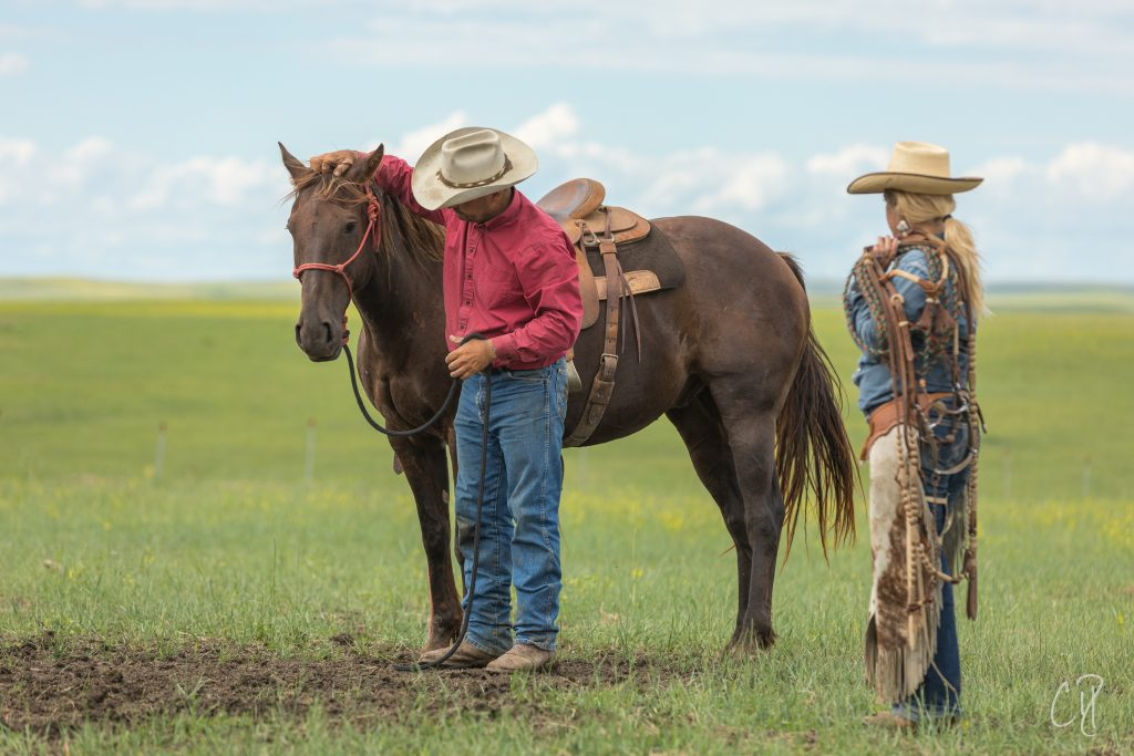 horsemanship, the dx ranch, chris dickinson photography