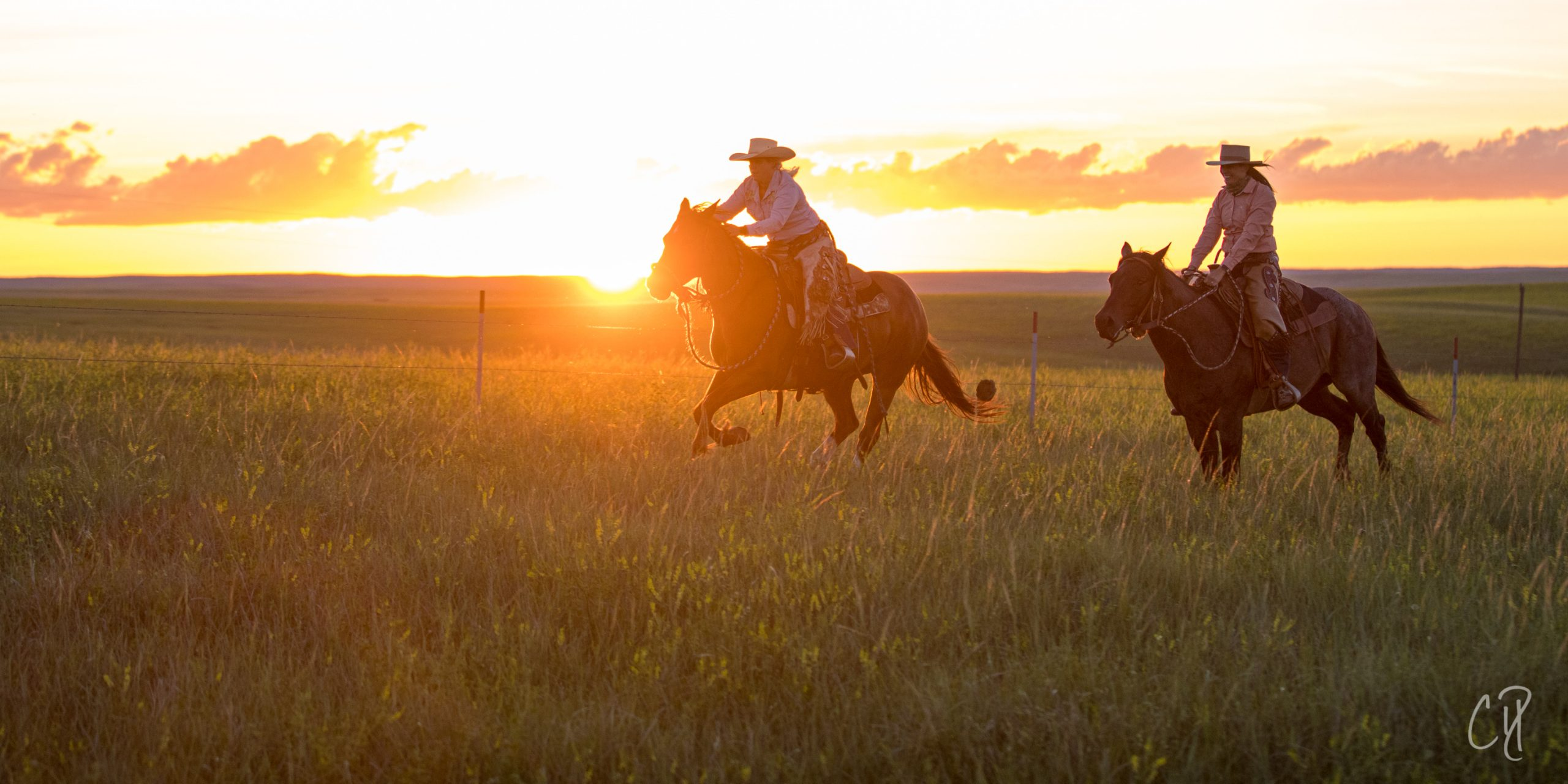 horsemanship experience, the dx ranch, horsemanshiop